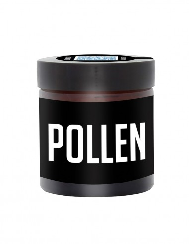 Pollen  - CBD - Bloomers