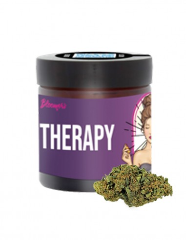 THERAPY - Bloomers